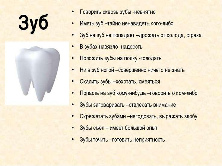 Зуб Говорить сквозь зубы -невнятно Иметь зуб –тайно ненавидеть кого-либо Зуб ...