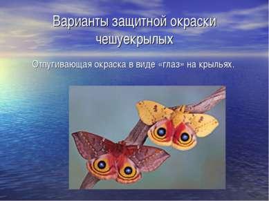 Варианты защитной окраски чешуекрылых Отпугивающая окраска в виде «глаз» на к...