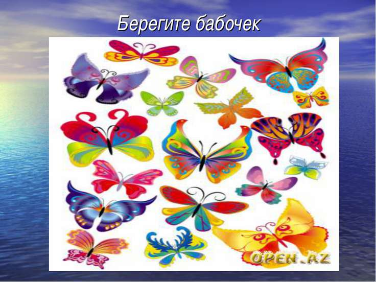 Берегите бабочек