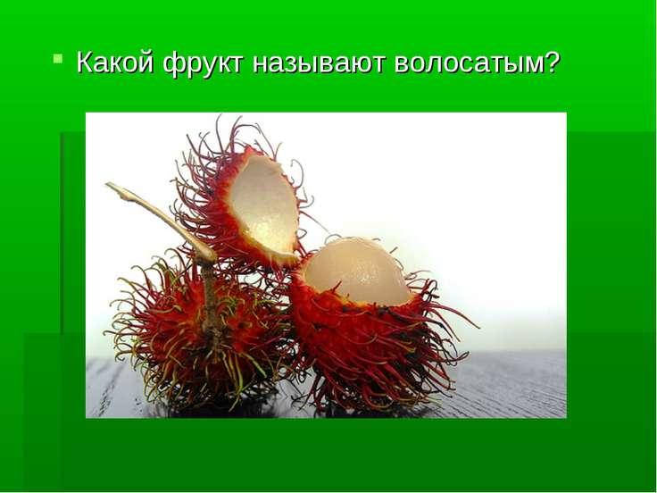 Какой фрукт называют волосатым?