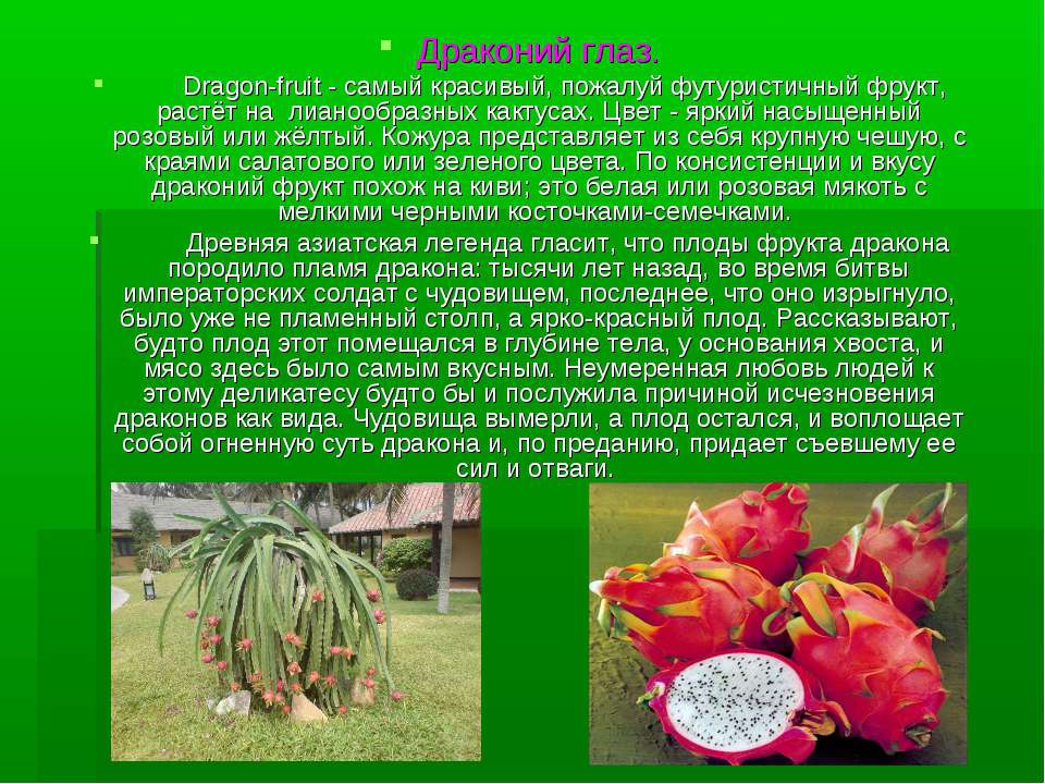 Драконий глаз. Dragon-fruit - самый красивый, пожалуй футуристичный фрукт, ра...
