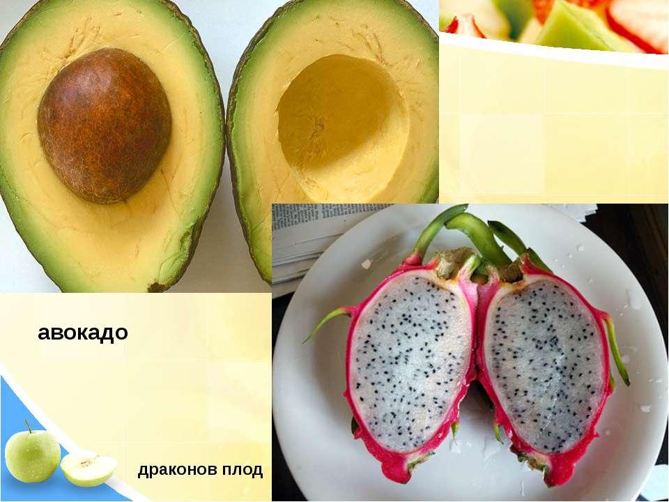 авокадо драконов плод