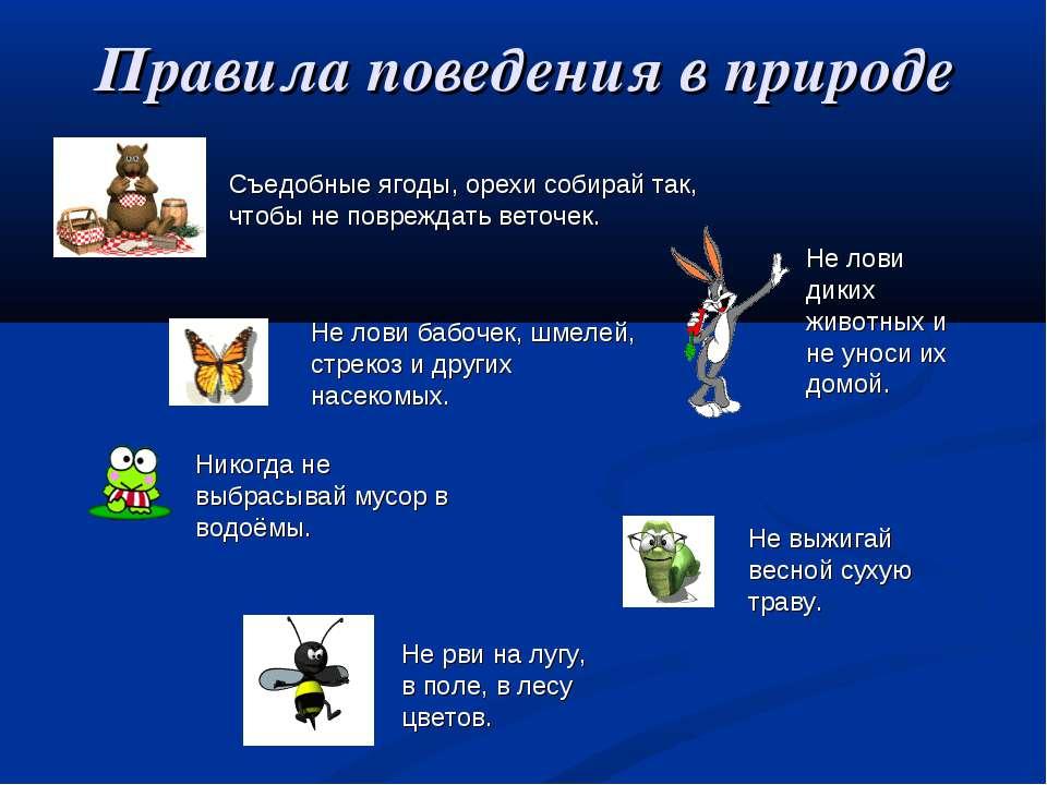 Правила поведения в природе Не лови бабочек, шмелей, стрекоз и других насеком...