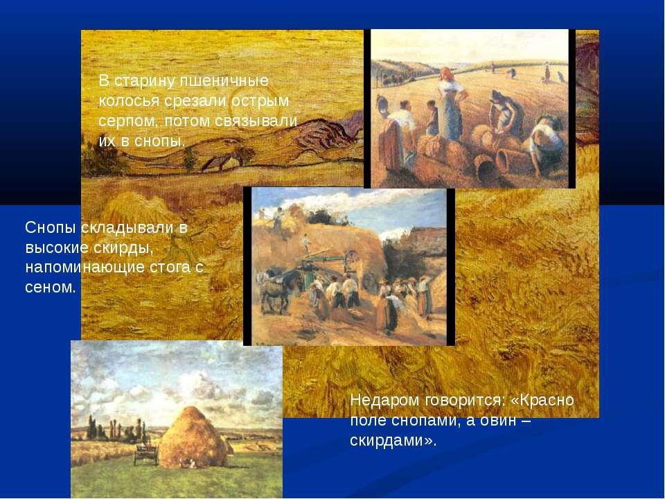 Недаром говорится: «Красно поле снопами, а овин – скирдами». В старину пшенич...
