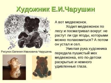 Художник Е.И.Чарушин А вот медвежонок. Ходил медвежонок по лесу и посматривал...