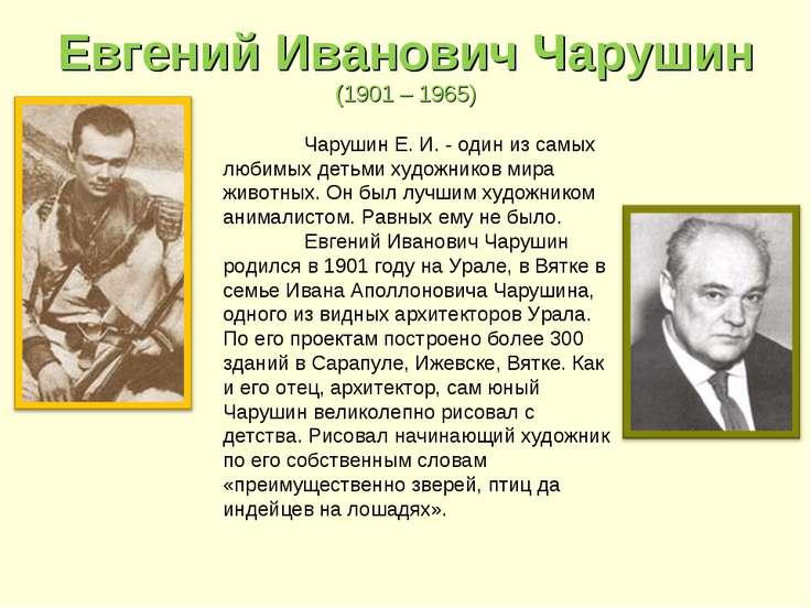 Евгений Иванович Чарушин (1901 – 1965) Чарушин Е. И. - один из самых любимых ...