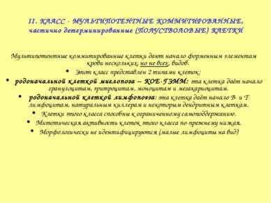 II. КЛАСС - МУЛЬТИПОТЕНТНЫЕ КОММИТИРОВАННЫЕ, частично детерминированные (ПОЛУ...