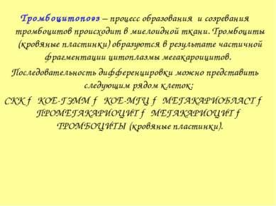 Тромбоцитопоэз – процесс образования и созревания тромбоцитов происходит в ми...
