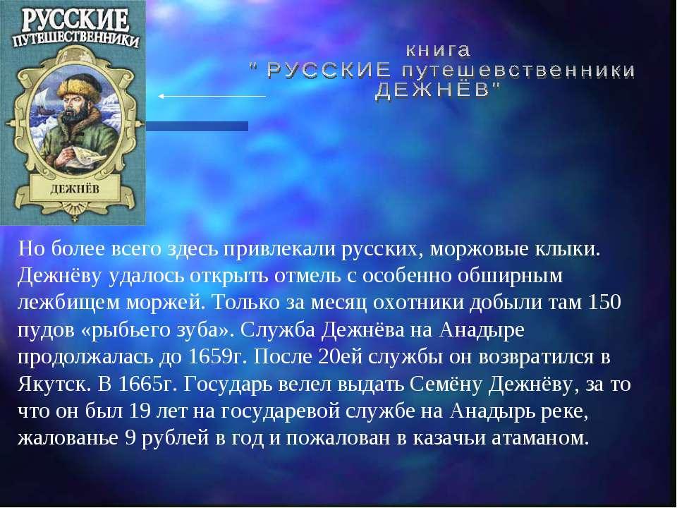 Но более всего здесь привлекали русских, моржовые клыки. Дежнёву удалось откр...