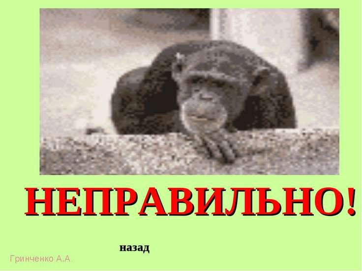 НЕПРАВИЛЬНО! назад Гринченко А.А.