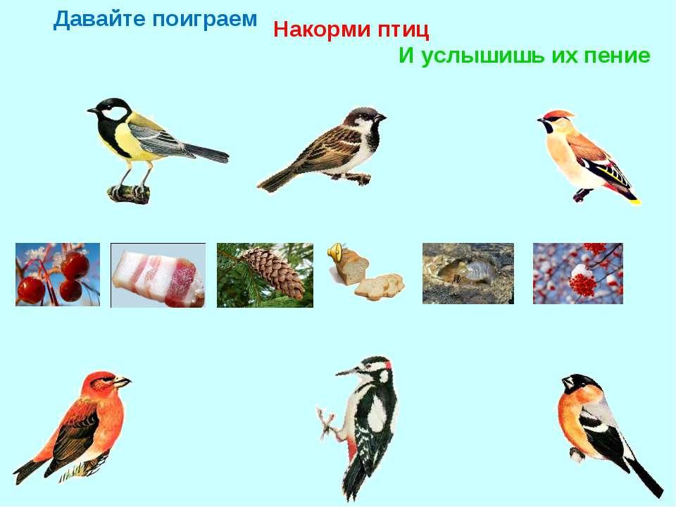 Давайте поиграем Накорми птиц И услышишь их пение