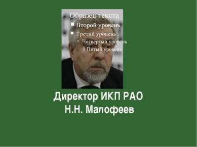 Директор ИКП РАО Н.Н. Малофеев