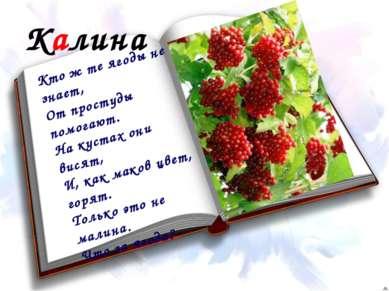 Калина Кто ж те ягоды не знает, От простуды помогают. На кустах они висят, И,...
