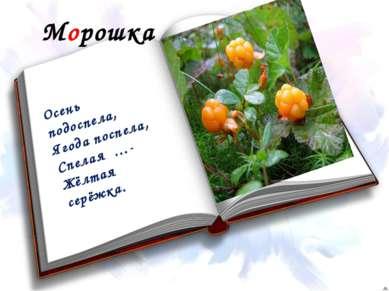 Морошка Осень подоспела, Ягода поспела, Спелая …- Жёлтая серёжка.