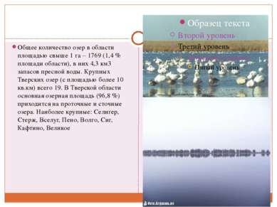 Общее количество озер в области площадью свыше 1 га – 1769 (1,4 % площади обл...
