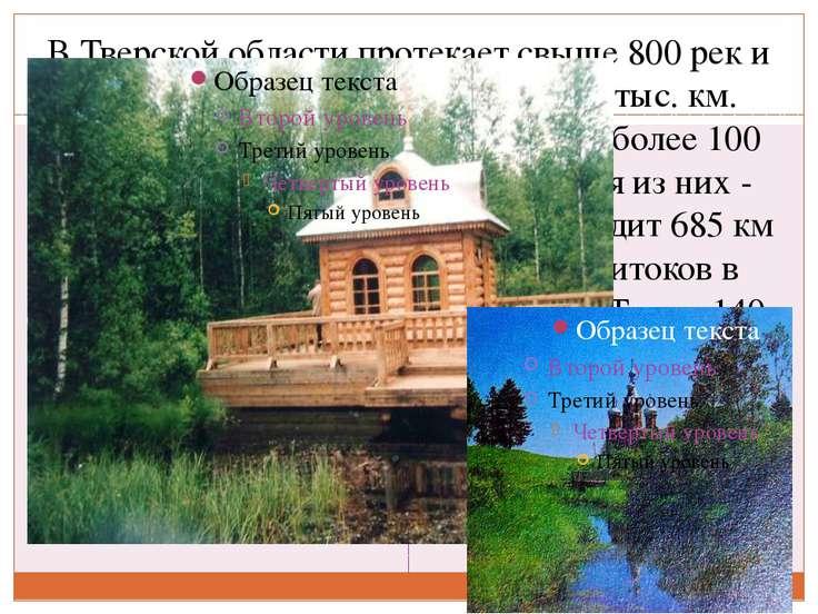 В Тверской области протекает свыше 800 рек и ручьев общей протяженностью 17 т...