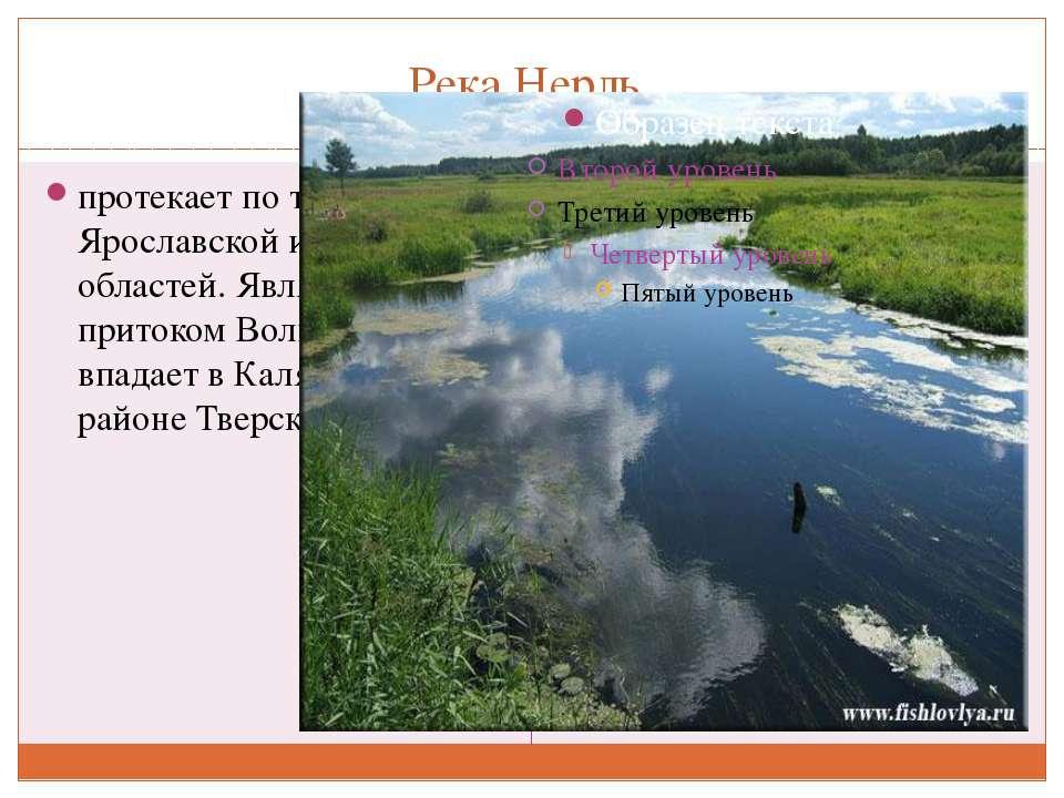 Река Нерль протекает по территориям Ярославской и Тверской областей. Является...