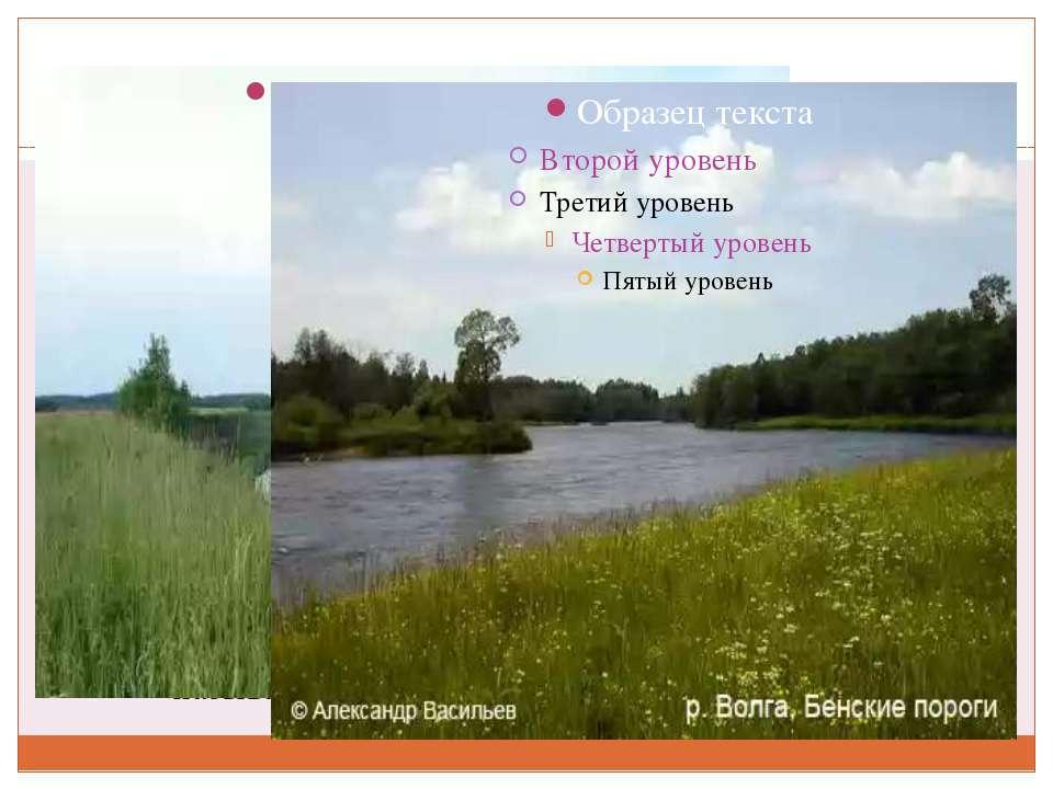 ВОЛГА Река Волга - одна из крупнейших рек на Земле и самая большая в Европе. ...