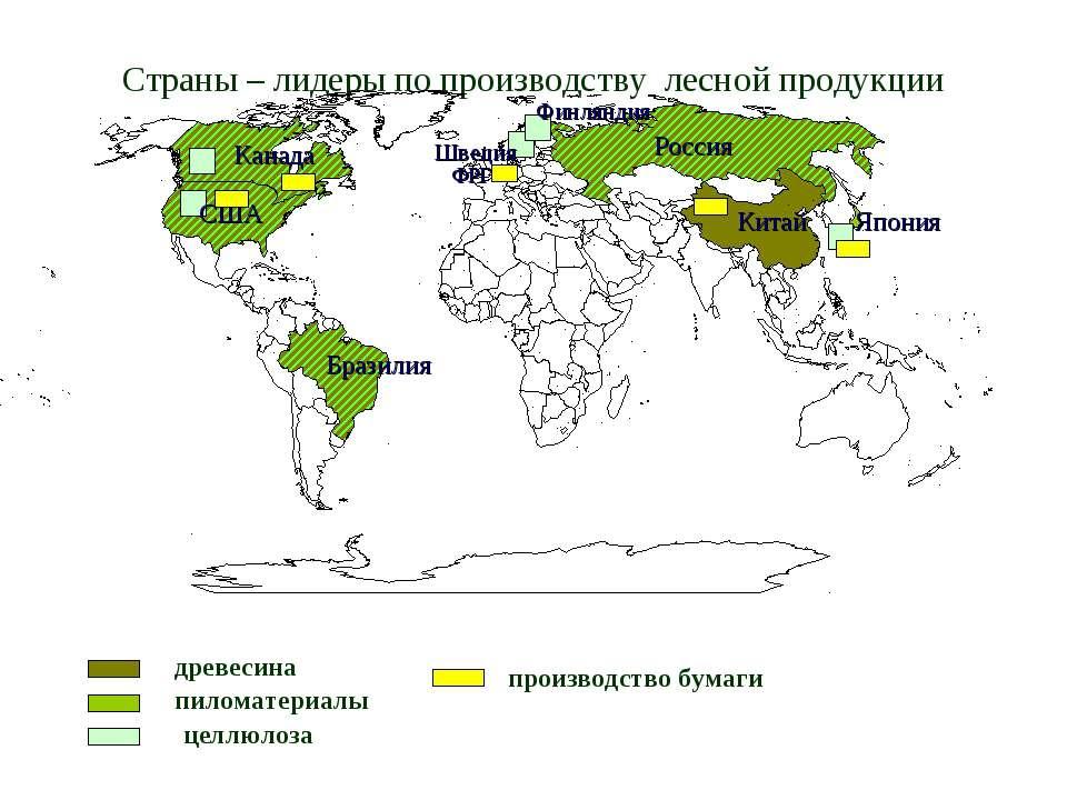 Страны – лидеры по производству лесной продукции древесина