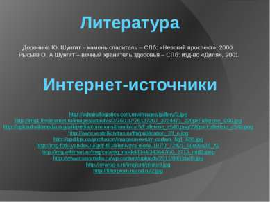 Литература Интернет-источники Доронина Ю. Шунгит – камень спаситель – СПб: «Н...