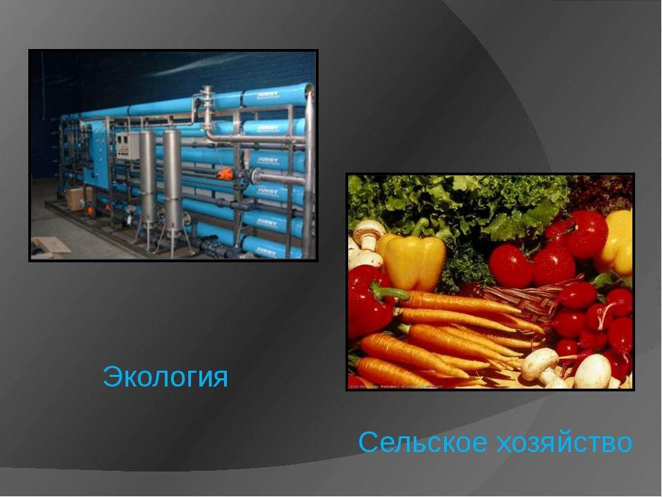 Экология Сельское хозяйство