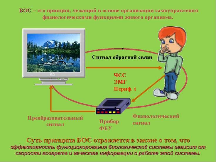 Сигнал обратной связи Прибор ФБУ ЧСС ЭМГ Периф. t БОС – это принцип, лежащий ...