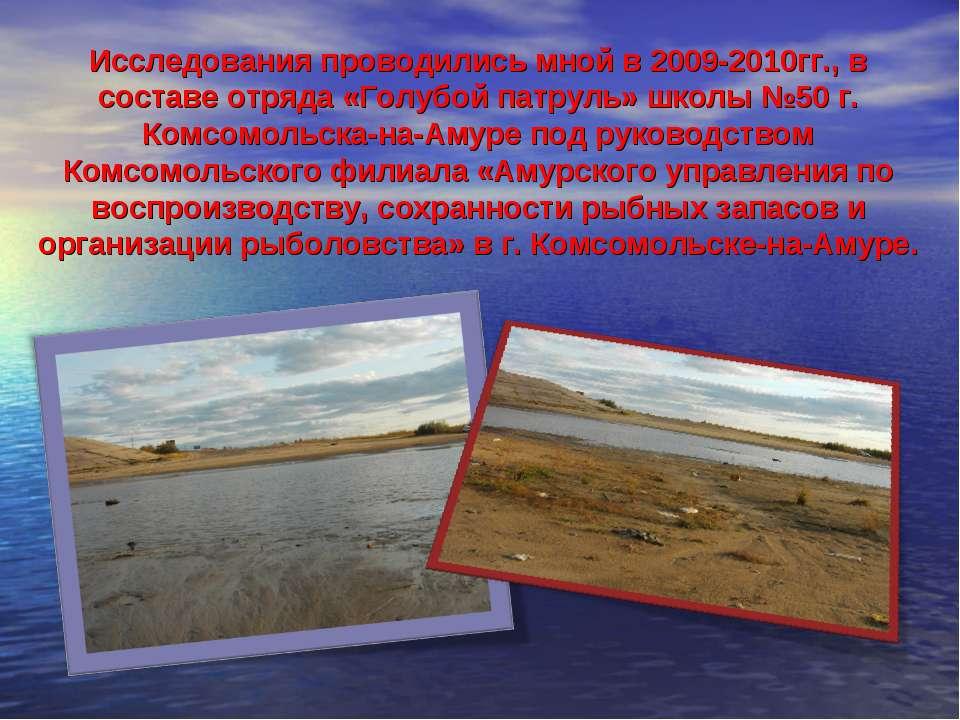 Исследования проводились мной в 2009-2010гг., в составе отряда «Голубой патру...