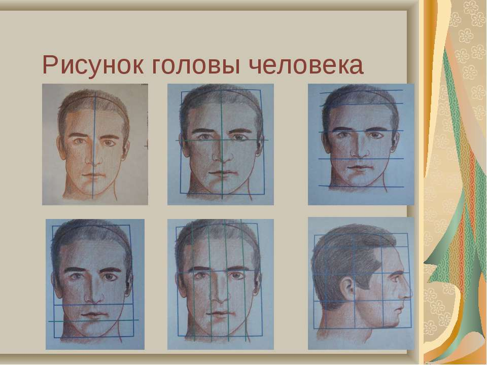 Рисунок головы человека