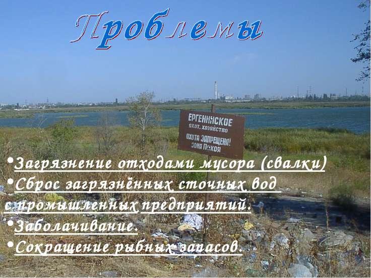 Загрязнение отходами мусора (свалки) Сброс загрязнённых сточных вод с промышл...