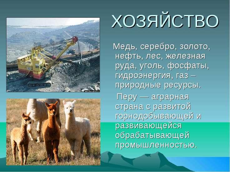 ХОЗЯЙСТВО Медь, серебро, золото, нефть, лес, железная руда, уголь, фосфаты, г...