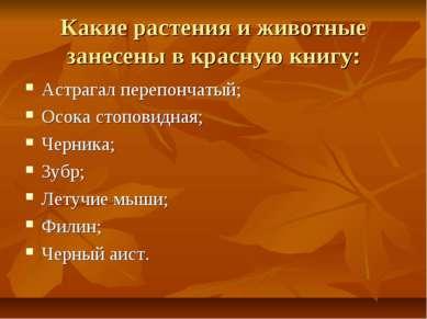 Какие растения и животные занесены в красную книгу: Астрагал перепончатый; Ос...