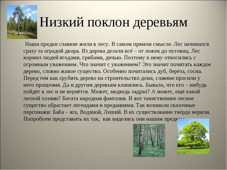 Низкий поклон деревьям Наши предки славяне жили в лесу. В самом прямом смысле...