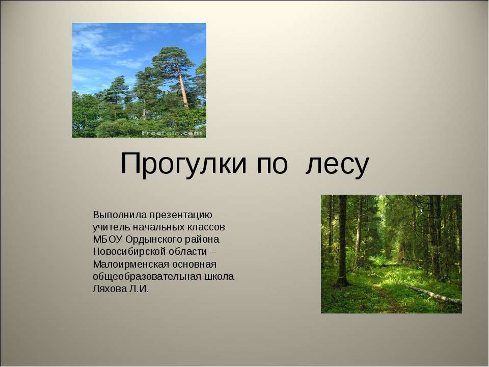 Прогулки по лесу Выполнила презентацию учитель начальных классов МБОУ Ордынск...