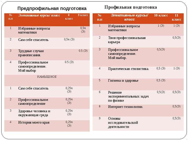 Предпрофильная подготовка Профильная подготовка № п.п Элективные курсы/ класс...