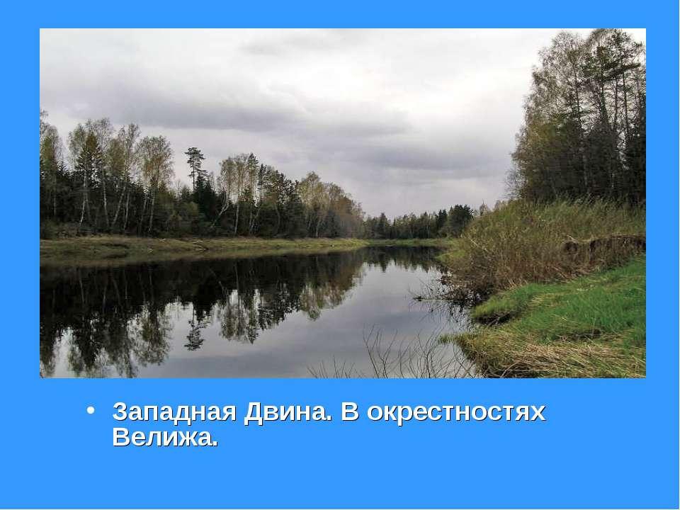 Западная Двина. В окрестностях Велижа.