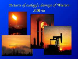 Pictures of ecology's damage of Western Siberia
