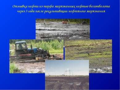 Отмывка нефти из торфа загрязненных нефтью болотболота через 3 года после рек...