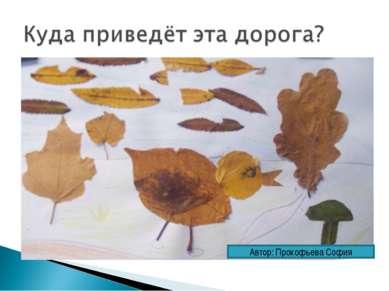 Автор: Прокофьева София