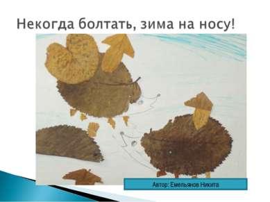 Автор: Емельянов Никита