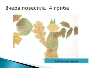 Автор: Шевченко Кристина