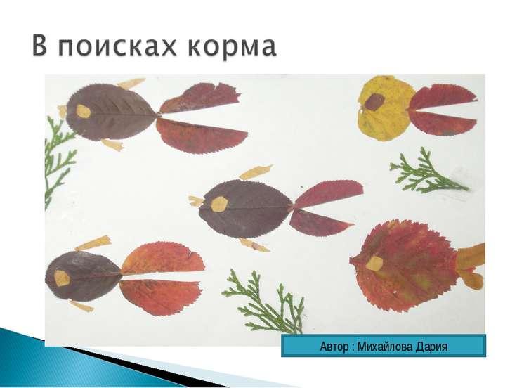 Автор : Михайлова Дария