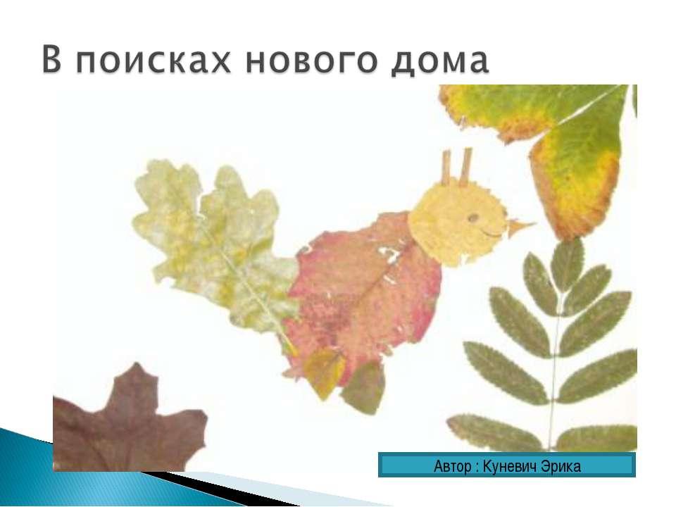 Автор : Куневич Эрика