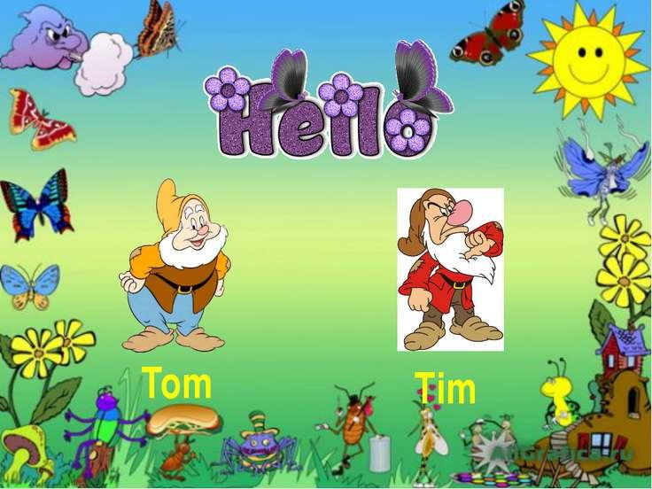 Tom Tim
