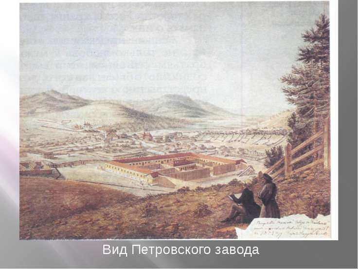 Вид Петровского завода