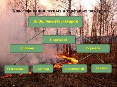 Подземный Классификация лесных и торфяных пожаров: Виды лесных пожаров Низово...