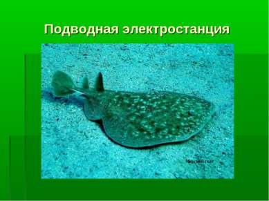 Подводная электростанция Морской скат