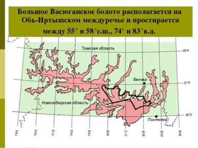 Большое Васюганское болото располагается на Обь-Иртышском междуречье и прости...