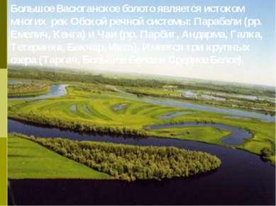 Большое Васюганское болото является истоком многих рек Обской речной системы:...