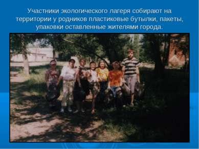 Участники экологического лагеря собирают на территории у родников пластиковые...