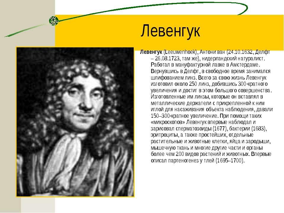 Левенгук Левенгук (Leeuwenhoek), Антони ван (24.10.1632, Делфт – 26.08.1723, ...